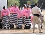 arpaio racist think pink