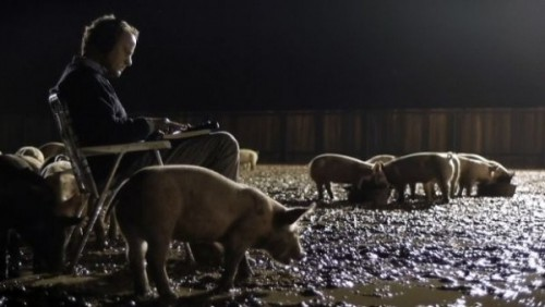 upstream color sampler