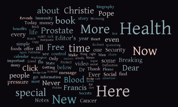 Newsmax word cloud