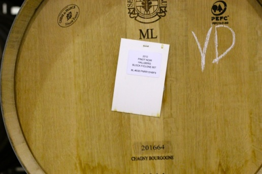 Pinot Noir in the Barrel