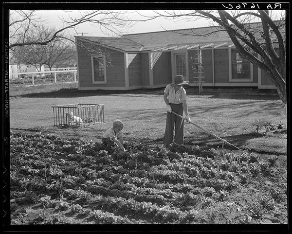 'We simply tried to create an intensely practical environment for 100 fine families.' Ross H. Gast   Photo by Dorothea Lange. Courtesy of Library of Congress, Prints & Photographs Division, FSA/OWI Collection, LC-USF34-001676