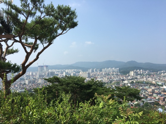 Fortress view of Suwon