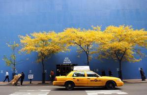 autumn-new-york_1113315i