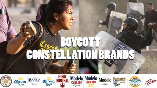 boycott constellation brands