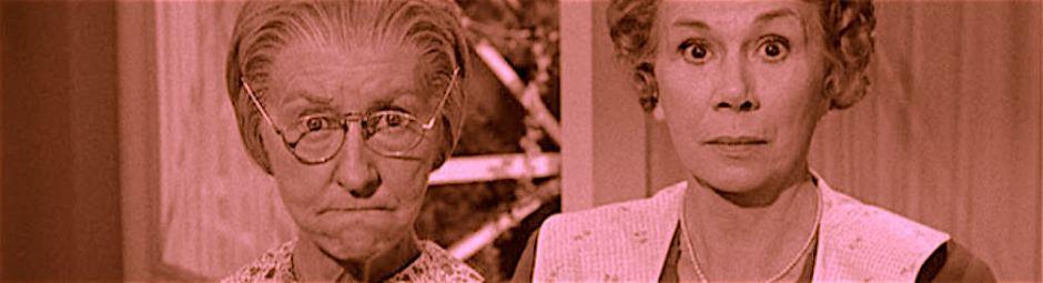 granny from beverly hillbillies