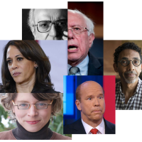 The Democratic Primary Field as a History Department